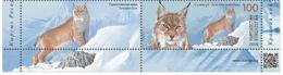 H01 Kyrgyzstan 2018 Mi# 114-117 Animals Red Book Wild Cats Bears Manul Label MNH - Kirgisistan