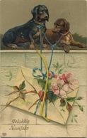 TECKEL - Dachshund   :  Reliëf     (  Written 1909  With Stamp ) - Chiens