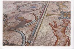 Israel, CAESAREA, Mosaic From The Roman Period, Unused Postcard [22644] - Israel
