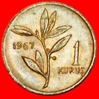 # OLIVE (1963-1974): TURKEY★ 1 KURUS 1967 UNC! LOW START ★ NO RESERVE! - Turquie