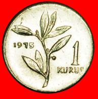 # OLIVE (1975-1977): TURKEY★ 1 KURUS 1975 MINT LUSTER! LOW START ★ NO RESERVE! - Turquie