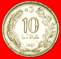 # CRESCENT LEFT: TURKEY ★ 10 LIRA 1981! LOW START ★ NO RESERVE! - Turquie