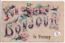 TERNNAY- UN BONJOUR DE TERNAY- EN L ETAT - Frankreich