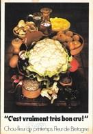 """Plaquette Publicitaire  """" Choux De Printemps; Fleur De Bretagne """"  Saint-Pol-de-Leon (22-Finistére) - Advertising"""
