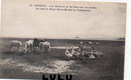 DEPT 50 : J Puet Photo N° 10 : Genets Les Moutons Et Les Oies Sur Les Herbus Au Loin Le Mont Saint Michel Et Tombelaine - France