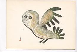 Lucy Qinnuayuak Cape Dorset, Owl, Unused Postcard [22660] - Paintings