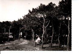 CPSM L'ILE TUDY Le Camping Du GCU (carte Exclusivité Toularastel) - Ile Tudy