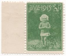 Denmark 1915, Julemaerke, Christmas Stamp, Vignet, Poster Stamp - Denmark