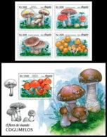 ANGOLA 2018 **MNH Mushrooms Pilze Champignons 4v+S/S - OFFICIAL ISSUE - DH1852 - Champignons