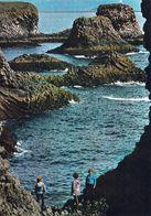 1 AK Island * Meeresküste Bei Stapi Auf Der Halbinsel Snæfellsnes, Wo Ein Lavastrom Sich Ins Meer Ergossen Hat * - Islande