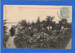 72 SARTHE - SILLE LE GUILLAUME Serres Et Jardins, Rue De Sablé, 1ère Vue (voir Descriptif) - Sille Le Guillaume