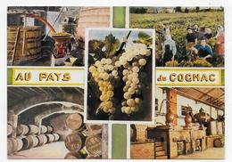 EN CHARENTE - AU PAYS DE COGNAC - N° 16/168 - MULTIVUES - CPSM GF NON VOYAGEE - Cognac