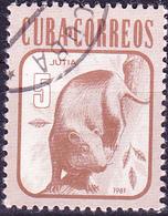 Kuba Cuba - Aguti (Dasyprocta Aguti) (Mi.Nr.: 2608) 1981 - Gest Used Obl - Cuba