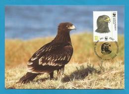 Georgien / Georgian  2007  Mi.Nr. 530 , Greater Spotted Eagle - Schelladler - WWF Maximum Card - Georgian 11.07.2007 - Georgien