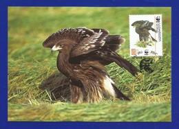 Georgien / Georgian  2007  Mi.Nr. 529 , Greater Spotted Eagle - Schelladler - WWF Maximum Card - Georgian 11.07.2007 - Georgien