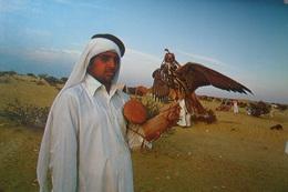 Qatar Youth Falcon - Qatar