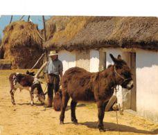 85-BOURRINE VENDEENNE-N°2190-A/0019 - Autres Communes