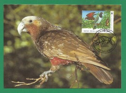 New Zealand 1993  Mi.Nr. 1293 , Kaka - WWF Official Maximum Card  9 June 1993 - Used Stamps