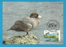 New Zealand 1993  Mi.Nr. 1291 , Blue Duck /  Saumschnabelente - WWF Official Maximum Card 9 June 1993 - Used Stamps
