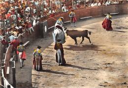 FREJUS - Corrida Dans Les Arènes Romaines -  CPSM Grand Format - Frejus