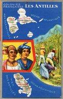 (84) CPA  Colonies Francaises Les Antilles Martinique  Produits Du Lion Noir (Bon état) - Martinique