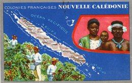 (84) CPA  Colonies Francaises Nouvelle Caledonie  Produits Du Lion Noir (Bon état) - Nouvelle Calédonie