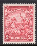 BARBADOS - 1938-1947 TWO PENCE CARMINE DEFINITIVE 1943 COLONY SEAL PERF 13.5 X 13 REF A MINT MM * SG 250d - Barbados (...-1966)