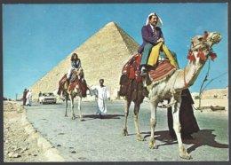 CP GIZA , The Biggest  Pyramid At Giza - Pyramids
