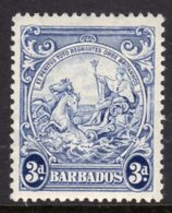 BARBADOS - 1938-1947 THREE PENCE BLUE DEFINITIVE 1947 COLONY SEAL PERF 13.5 X 13 REF A MOUNTED MINT MM * SG 252c - Barbados (...-1966)