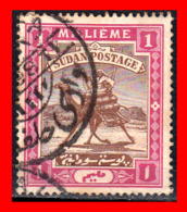 SUDAN CAMEL POST SELLO AÑO 1898-1906 - Sudan (1954-...)