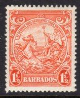 BARBADOS - 1938-1947 ONE PENNY HALFPENNY ORANGE DEFINITIVE 1938 COLONY SEAL PERF 13.5 X13 REF B MOUNTED MINT MM * SG 250 - Barbados (...-1966)