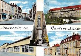 Souvenir De CHATEAU SALINS - Multivues  - CPSM Grand Format - Chateau Salins
