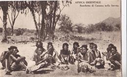 AFRICA ORIENTALE BANCHETTO DI CUNAMA NELLA FORESTA    AUTENTICA 100% - Cartoline