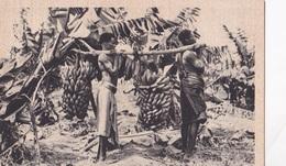 SOMALIA ITALIANA BANANETO AUTENTICA 100% - Somalie