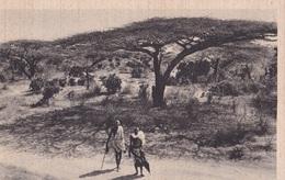 SOMALIA ITALIANA BOSCAGLIA  AUTENTICA 100% - Somalia