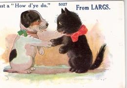 Chat Noir Et Chien-cat And Dog  -poes En Hond- Katze  Hund - Chats