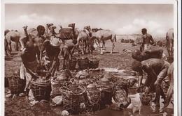 SOMALIA ITALIANA POZZI DELLA MIGIURTINIA AUTENTICA 100% - Somalie