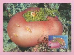 Nauru 2003  Mi.Nr. 555 , Pink Anemone Fish + Magnificent Sea Anemone - WWF Official Maximum Card 29.04.03 - Nauru