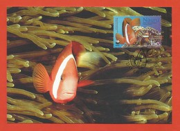 Nauru 2003  Mi.Nr. 553 , Red-and-black Anemone Fish + Bubble Tentacle Sea Anemone -WWF Official Maximum Card 29.04.03 - Nauru