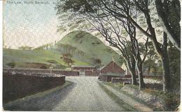 THE LAW - NORTH BERWICK - WITH GOOD NORTH BERWICK POSTMARK - 1905 - Berwickshire
