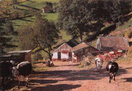 68-WASSERBOURG-N°2200-B/0125 - France
