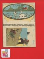 EX LIBRIS ILLUSTRÉ ANGLAIS CYGNES A PLIER Dos Bibliothèque Style Colonial Et Standard - Ex-libris