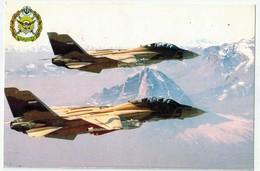 Avions De Chasse Iraniens. - Avions
