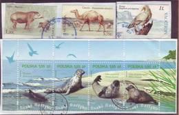 Moldova Moldavie Moldau Poland 7 Stamps Used - Moldova