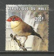 Mn Mali 1996. Birds,used Stamp - Songbirds & Tree Dwellers