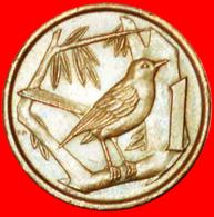 # BIRD (1972-1986): CAYMAN ISLANDS ★ 1 CENT 1977! LOW START ★ NO RESERVE! - Cayman Islands