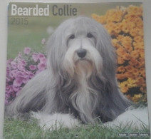 Calendrier 2015 -  Chiens, Bearded Collies - Ed. Avonside Publ. - Grand Format : 2001-...