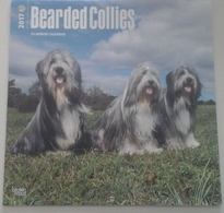 Calendrier 2017 -  Chiens, Bearded Collies - Ed. Brown Trout - Calendriers
