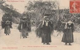 CPA - Femmes Descendant Le Bois De La Montagne - Pyrénées - Paysans