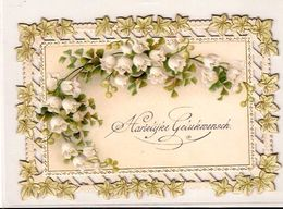 Hartelijk Gelukwensch   1 Januari  1901   Ref 827 D/2 - Gesneden Chromo's